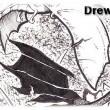 Drew1ss